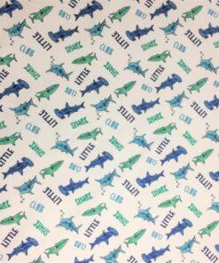 K800_Underwater-Panel-Shark.JPG